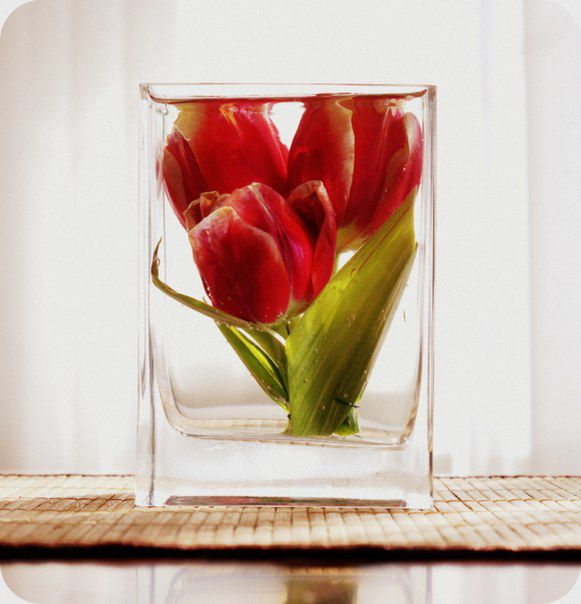 глицерин декор необычное цветы