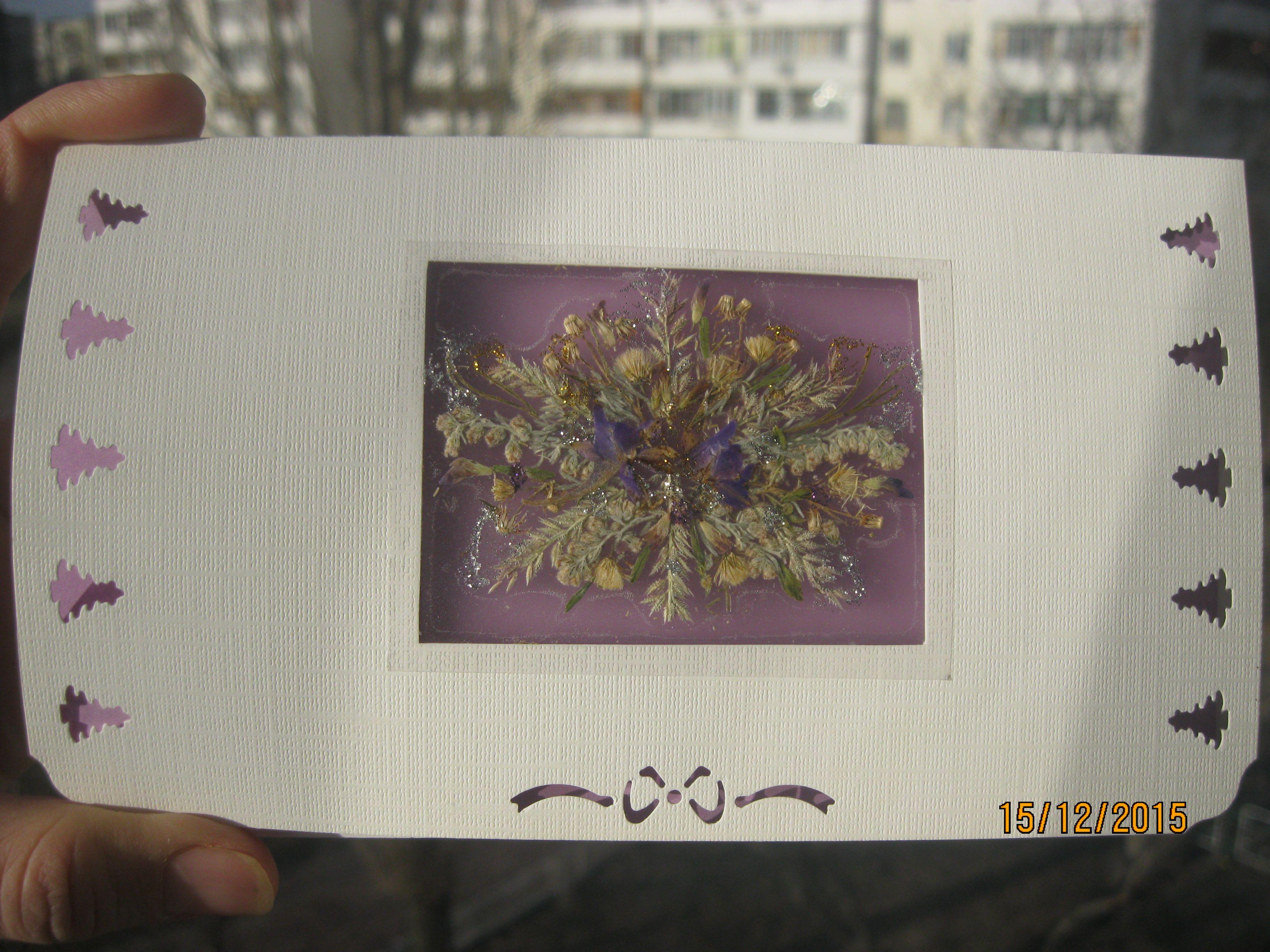 гербария цветов) (сухих открытки флористика поздравительные из