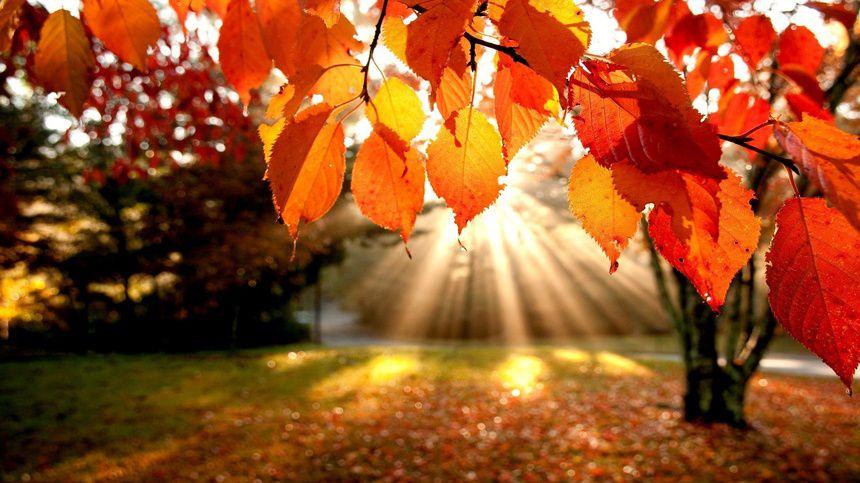 лайфстайл мотивация осень