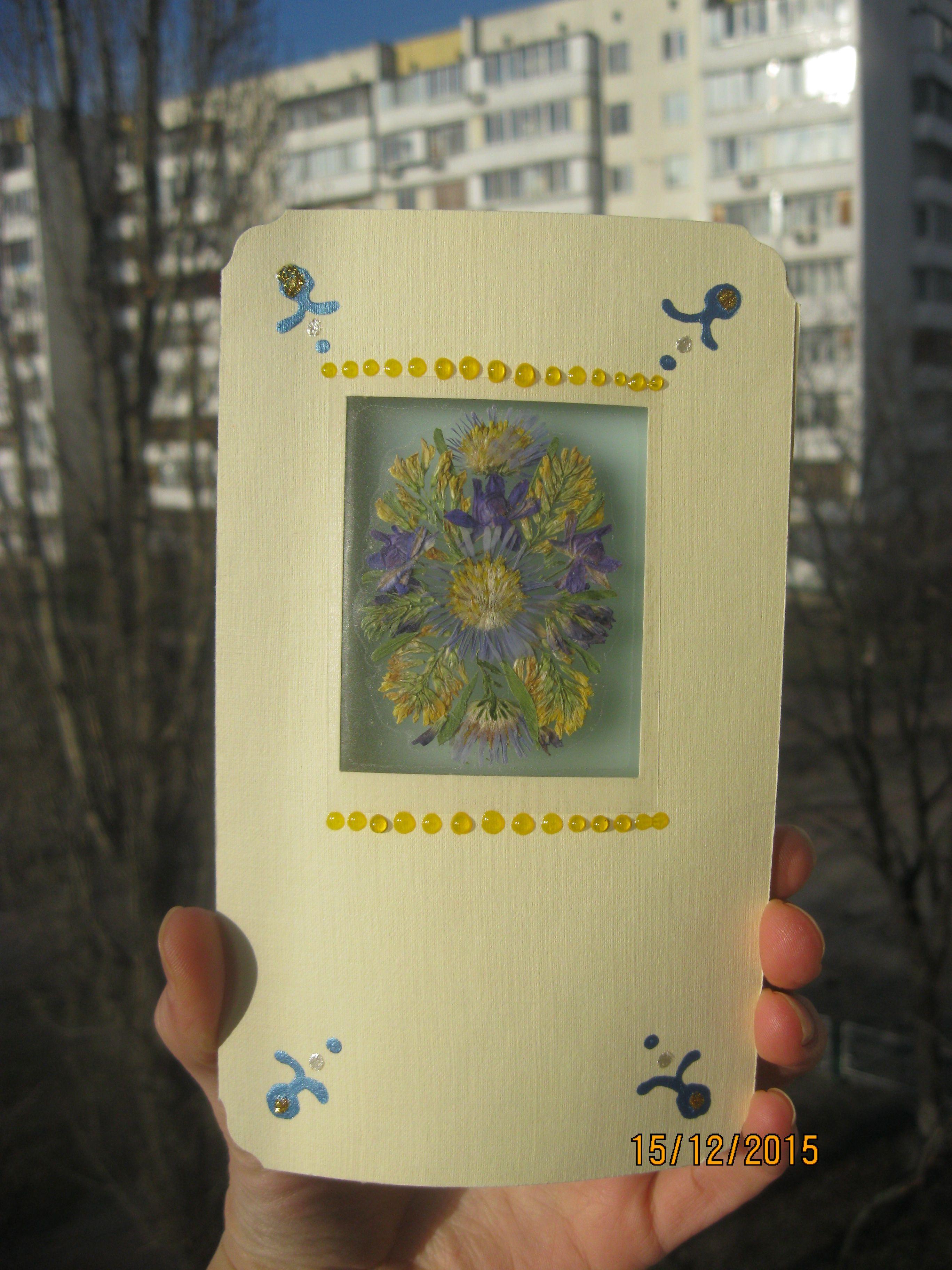 из поздравительные флористика открытки (сухих цветов) гербария