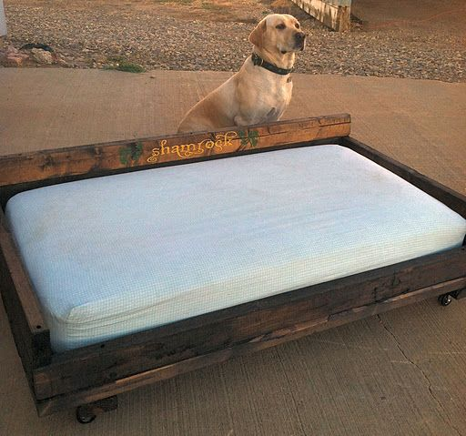 собак поддона для из кровать руками лежак своими
