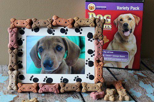 домашние дома ремесло фотографии подаркидети для животные идеи рамка руками своими
