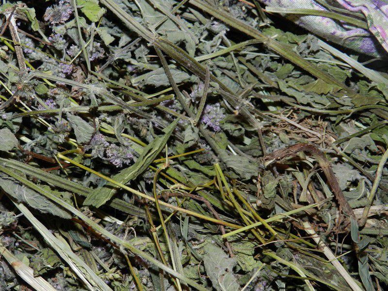 ароматы травы текстиль
