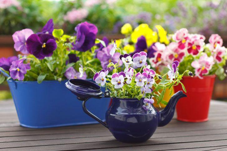 балкон сад мастеркласс интерьер растения