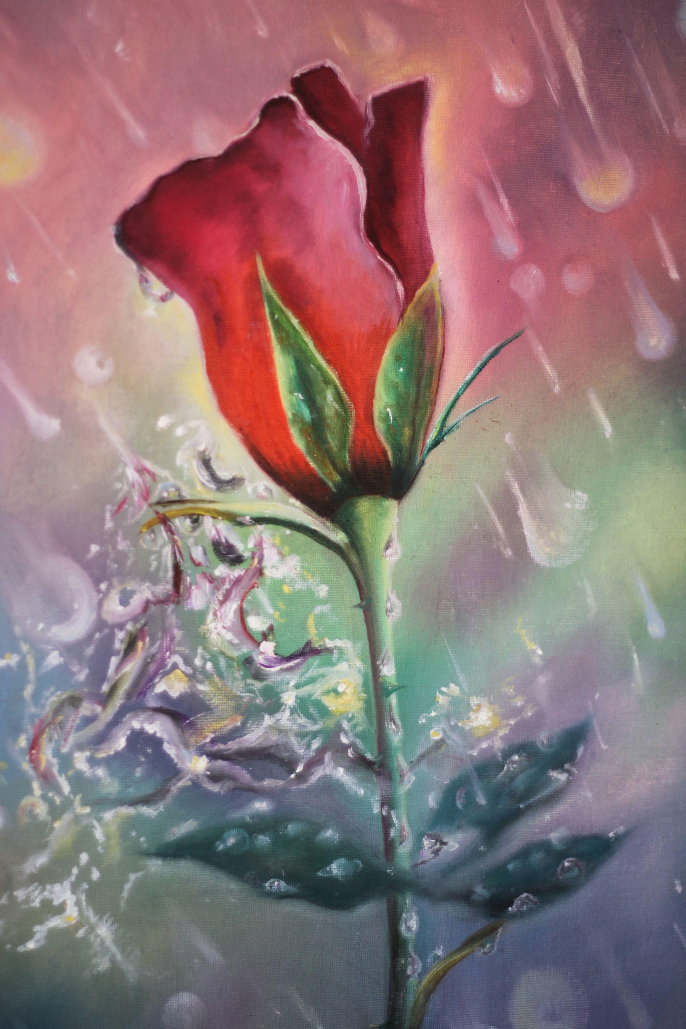 масло капли холст дождь роза цветы