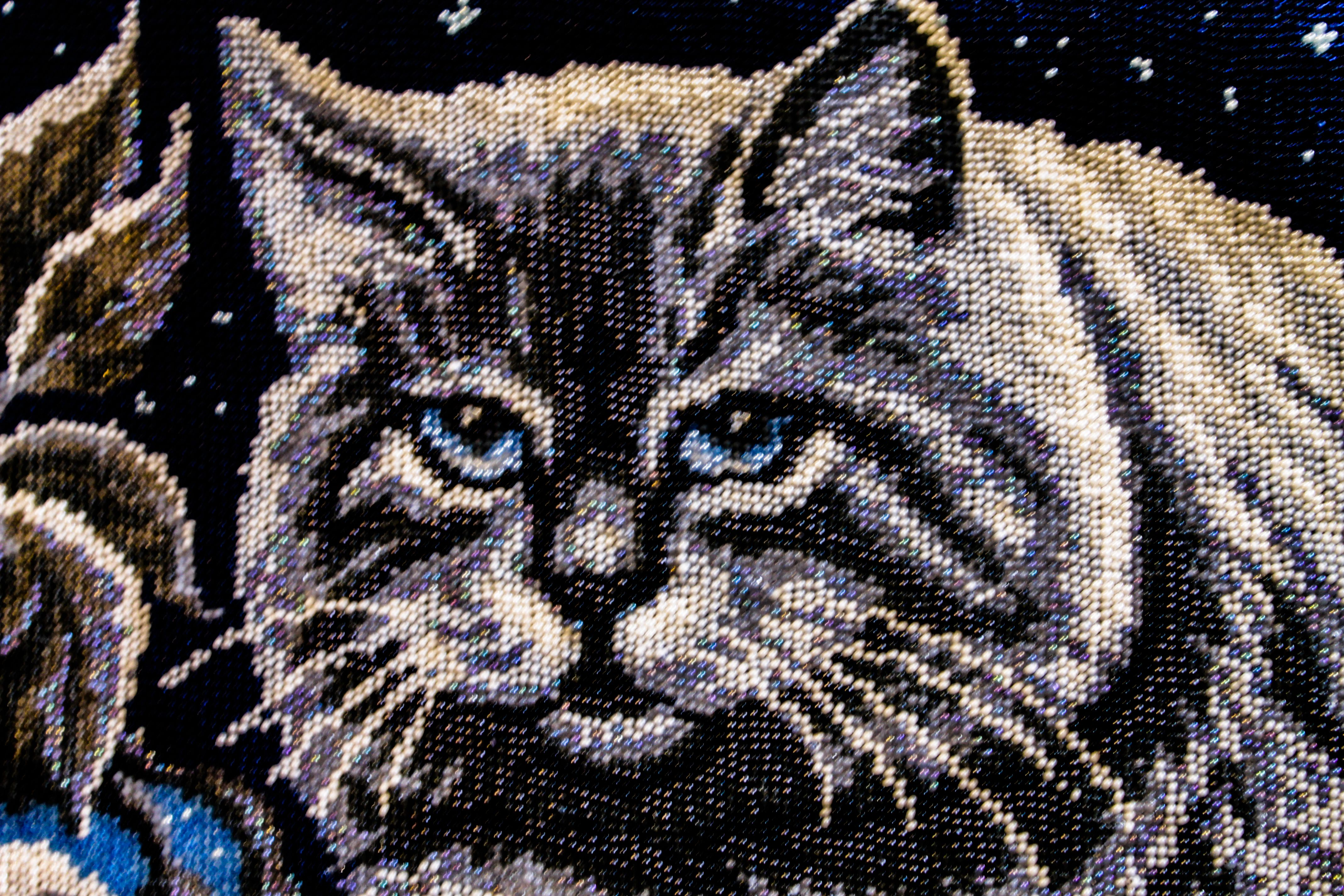 embroidery new year buy картина picture вышивкабисером beads cat beadwork art вышитая gift beauty embroidered combined moon beaded animals bead birthday present for вышивка