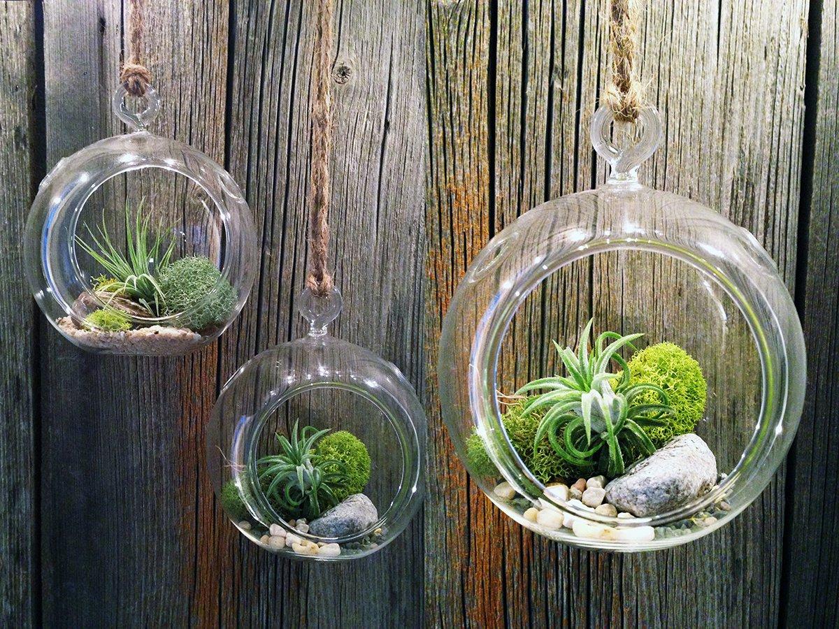 идеи своими декор кашпо сад домашний руками проекты diy висячий террариум открытом воздухе сделай сам