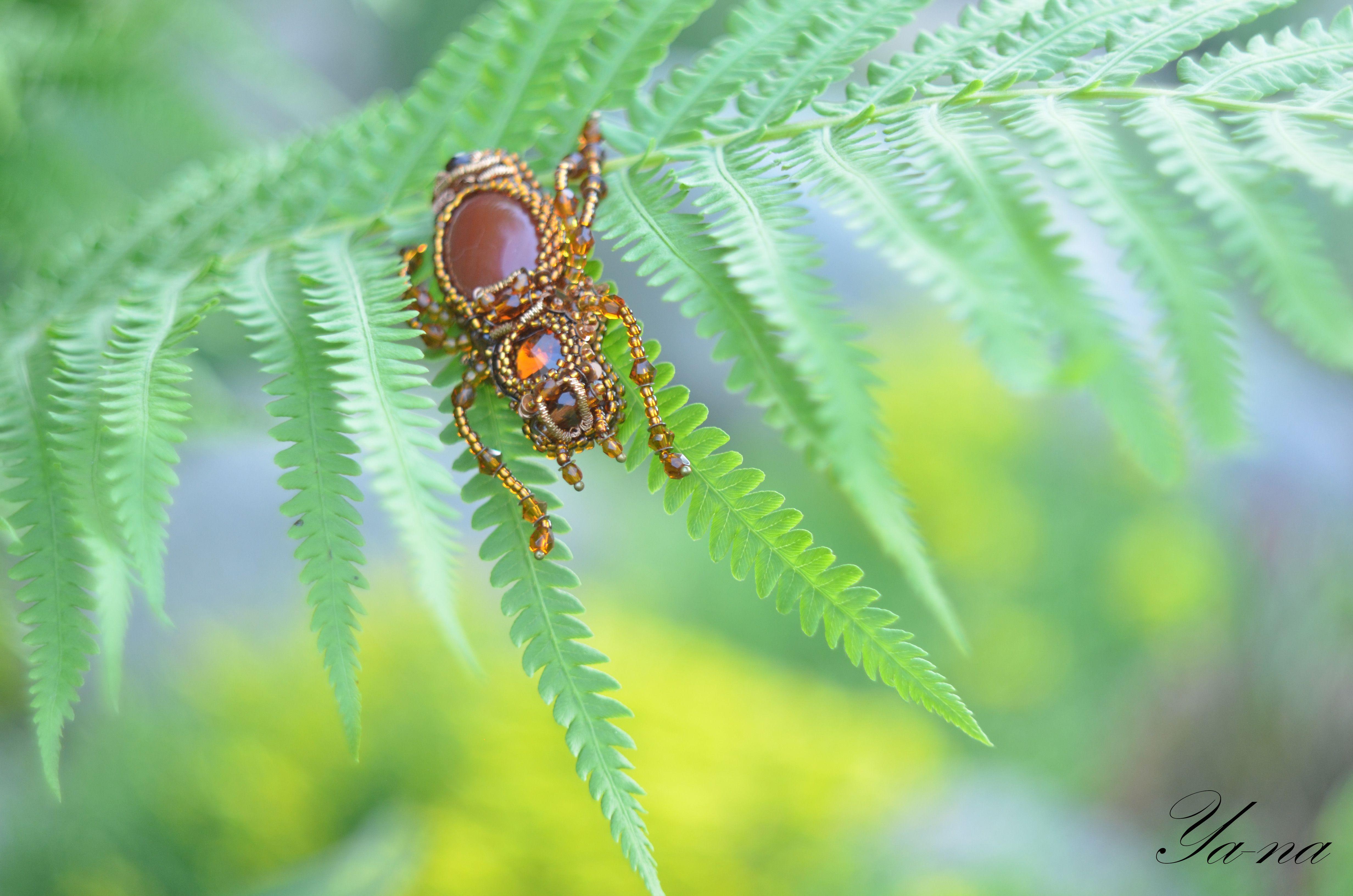 купитьжука бисерныйжук жукизбисера жуккоричневый брошьжук купитьброшь насекомое брошьизбисера длялюбимой брошьвподарок