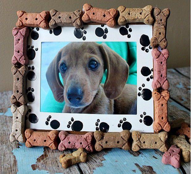домашние фотографии дома для животные ремесло идеи рамка руками своими подаркидети