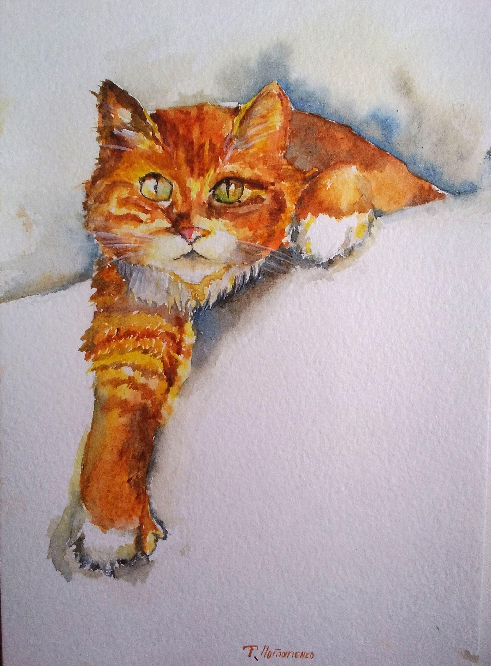 акварель рыжий кот