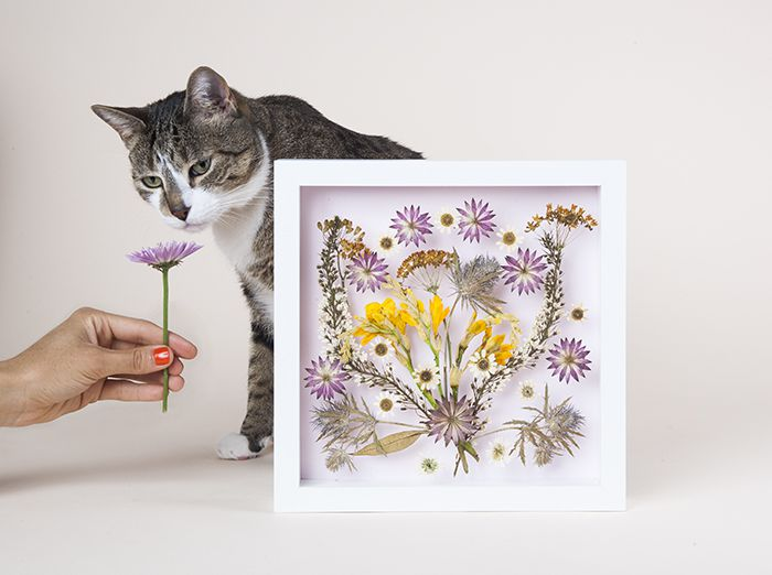 мастеркласс интерьер рамка цветы сухоцветы картина