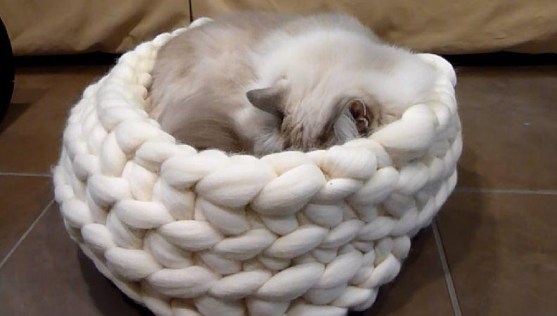 вязание толстая животных подарки пряжа для сделай сам кровать