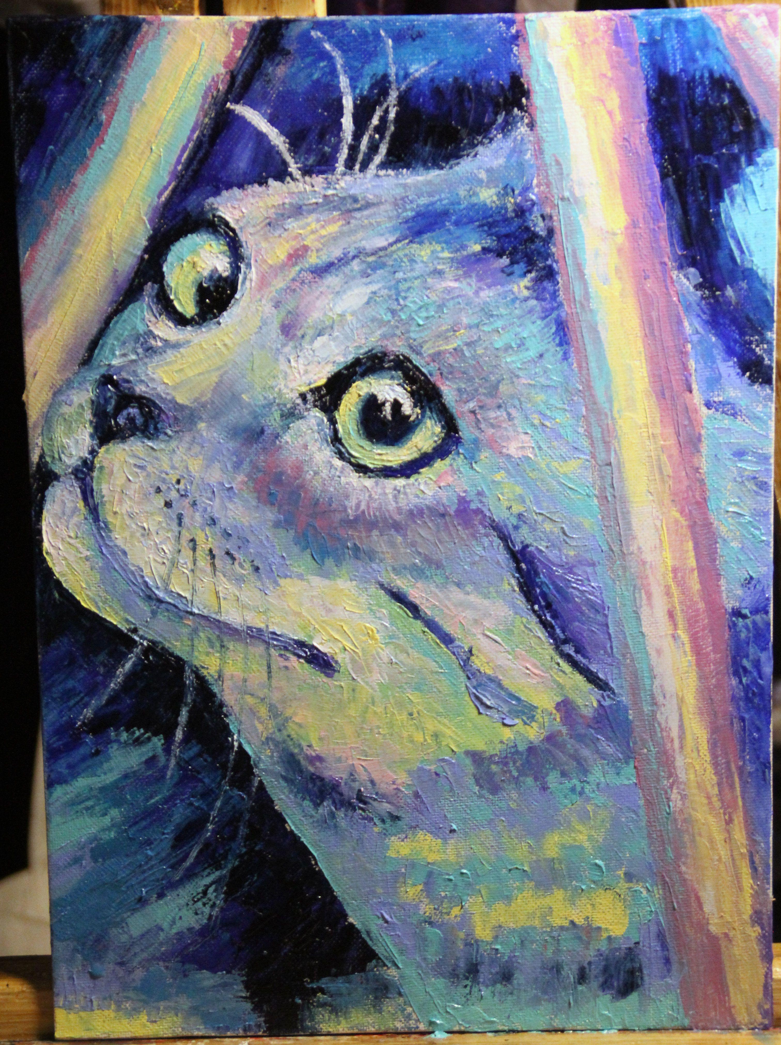 холст котик масло мастихин абстракция живопись животные портрет кот