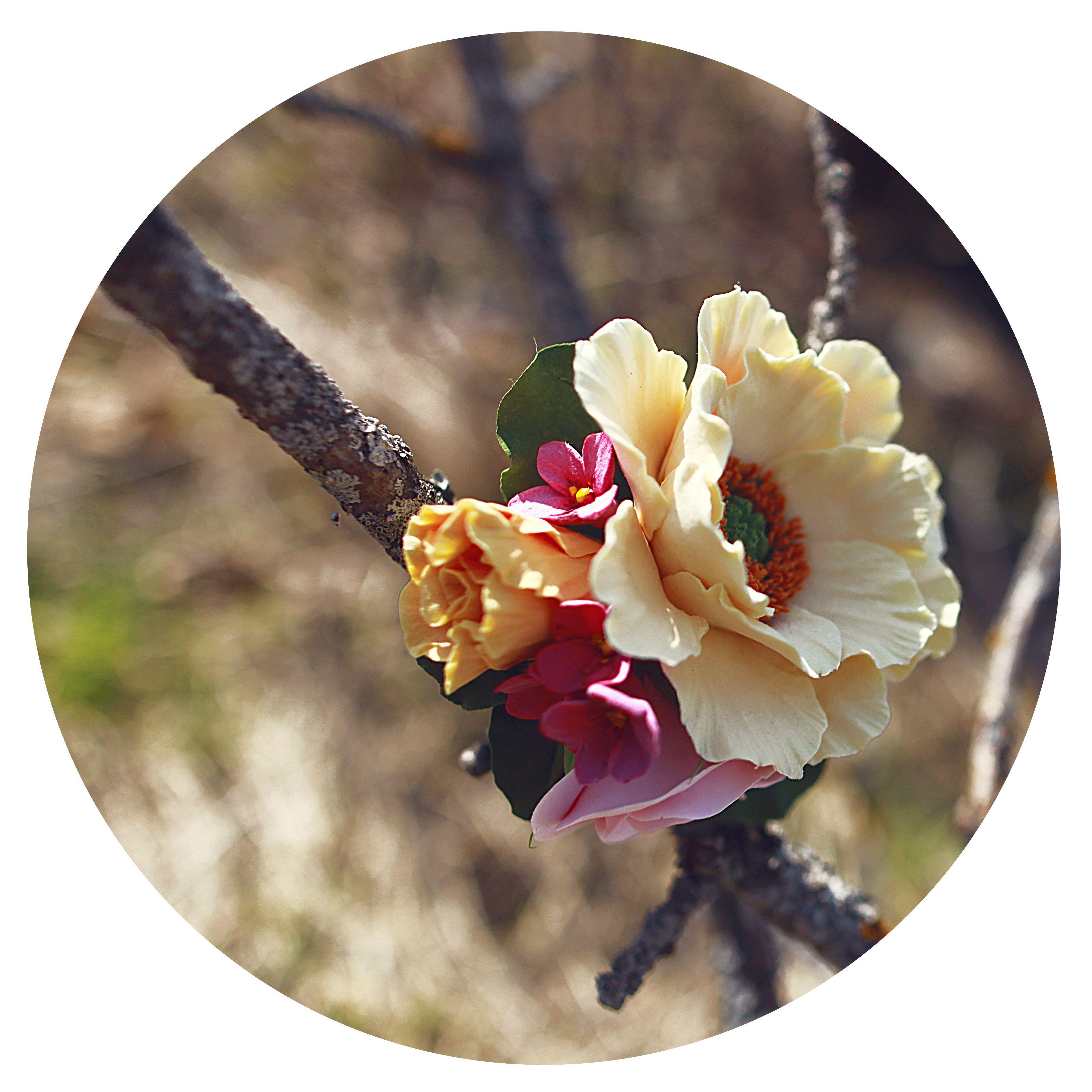 брошь украшение бежевый айвери украшения цветы