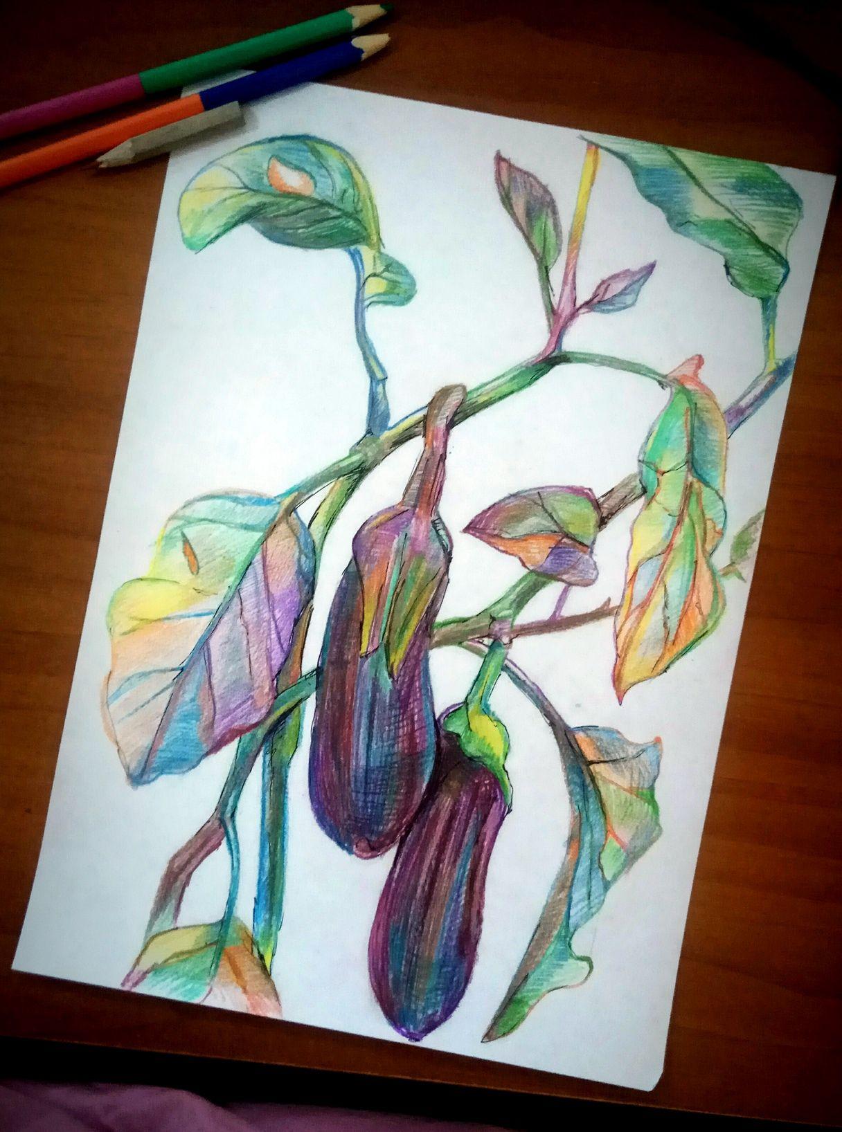 бананы баклажаны обощи лук рисунок гранат морковь карандаши фрукты натюрморт цветные