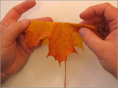 Поделки из природного материала своими руками 1