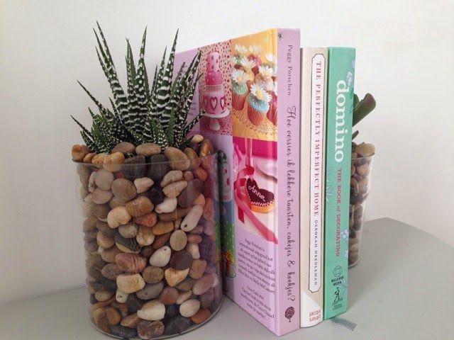 дома суккуленты доме подставки книг декор для в идеи растения
