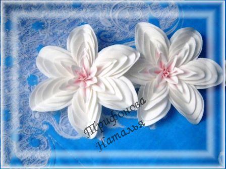банты цветы резинки