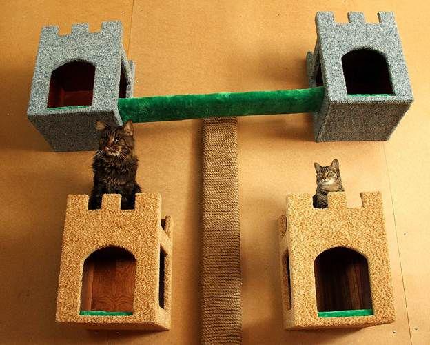 домашние мастеркласс для животные домик кошки