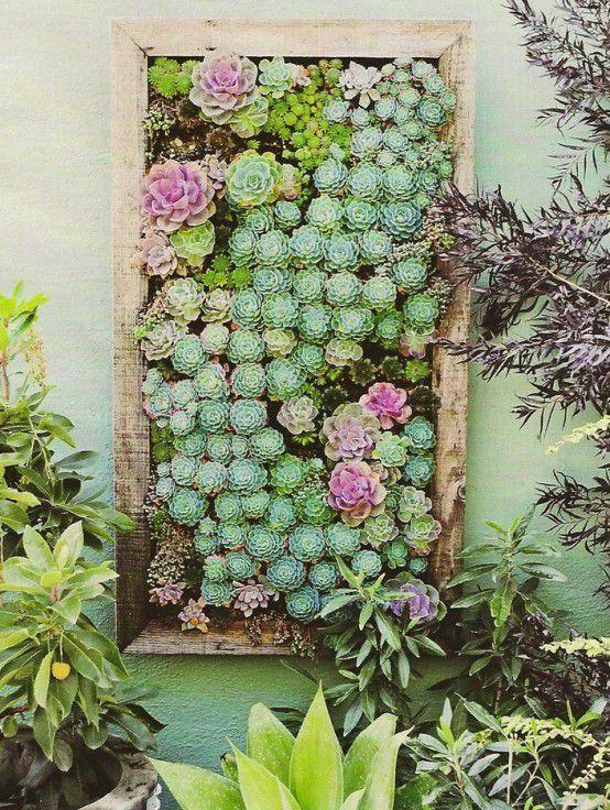 суккуленты идеи своими ремесло картины поделки декора дома живые для руками цветами сделай сам