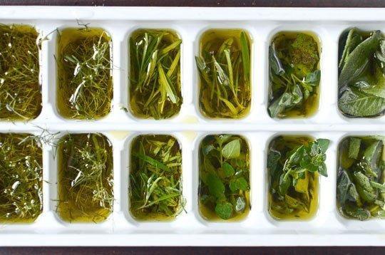 мастеркласс кулинария кухня оливковое заморозка хранение масло