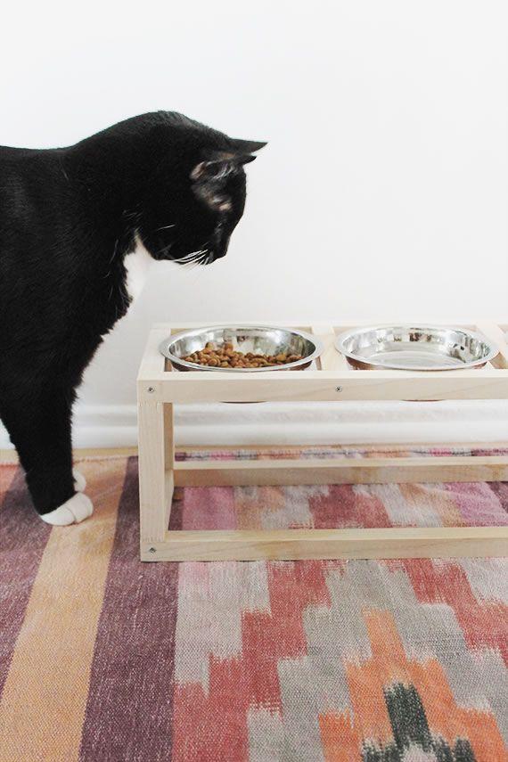 домашние подставка идеи своими животные животных дома для руками кормления сделай сам