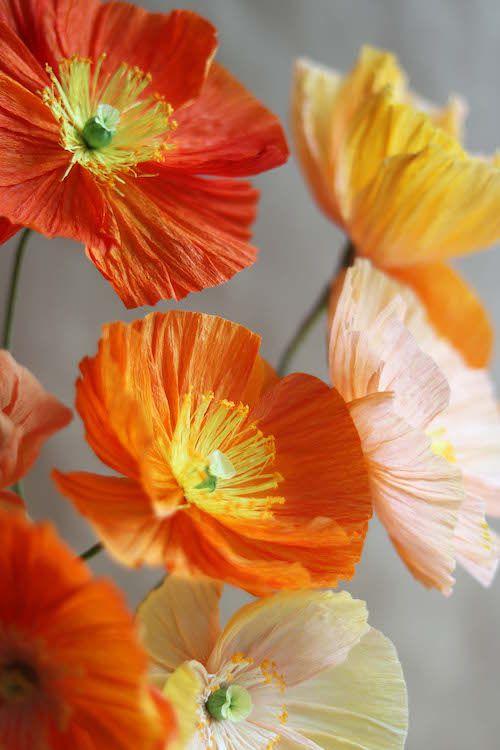 цветы бумажные бумага мастеркласс гофрированная