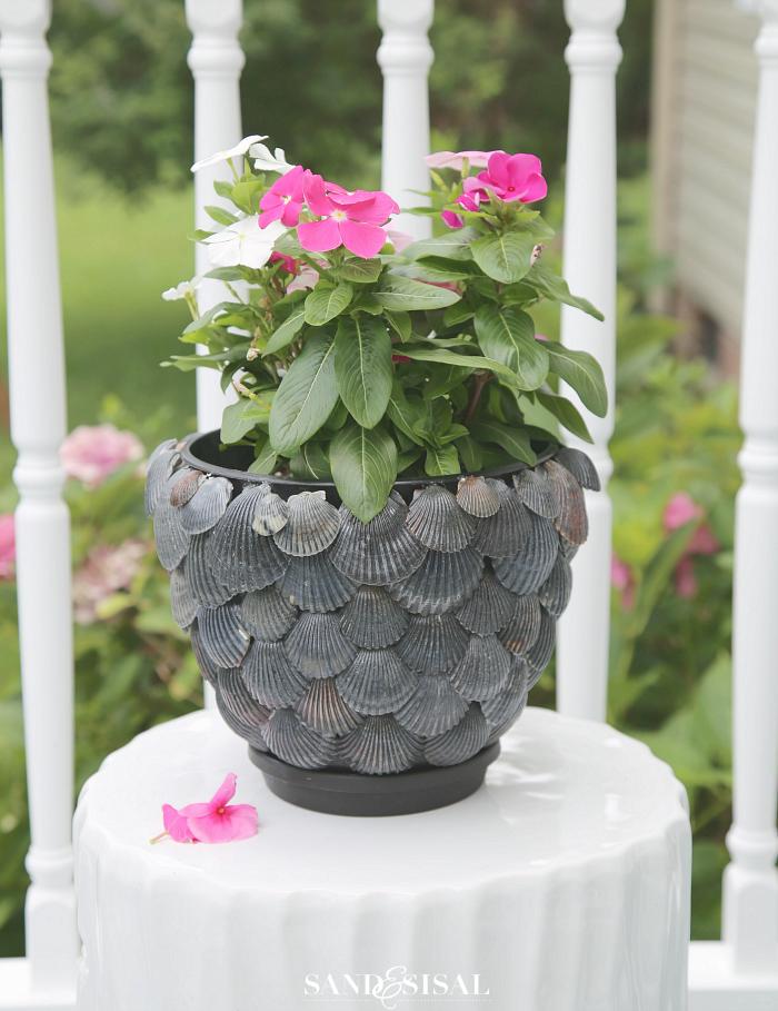 для руками своими идеи декор тематика сам стиль дома горшки сделай морская растений морской