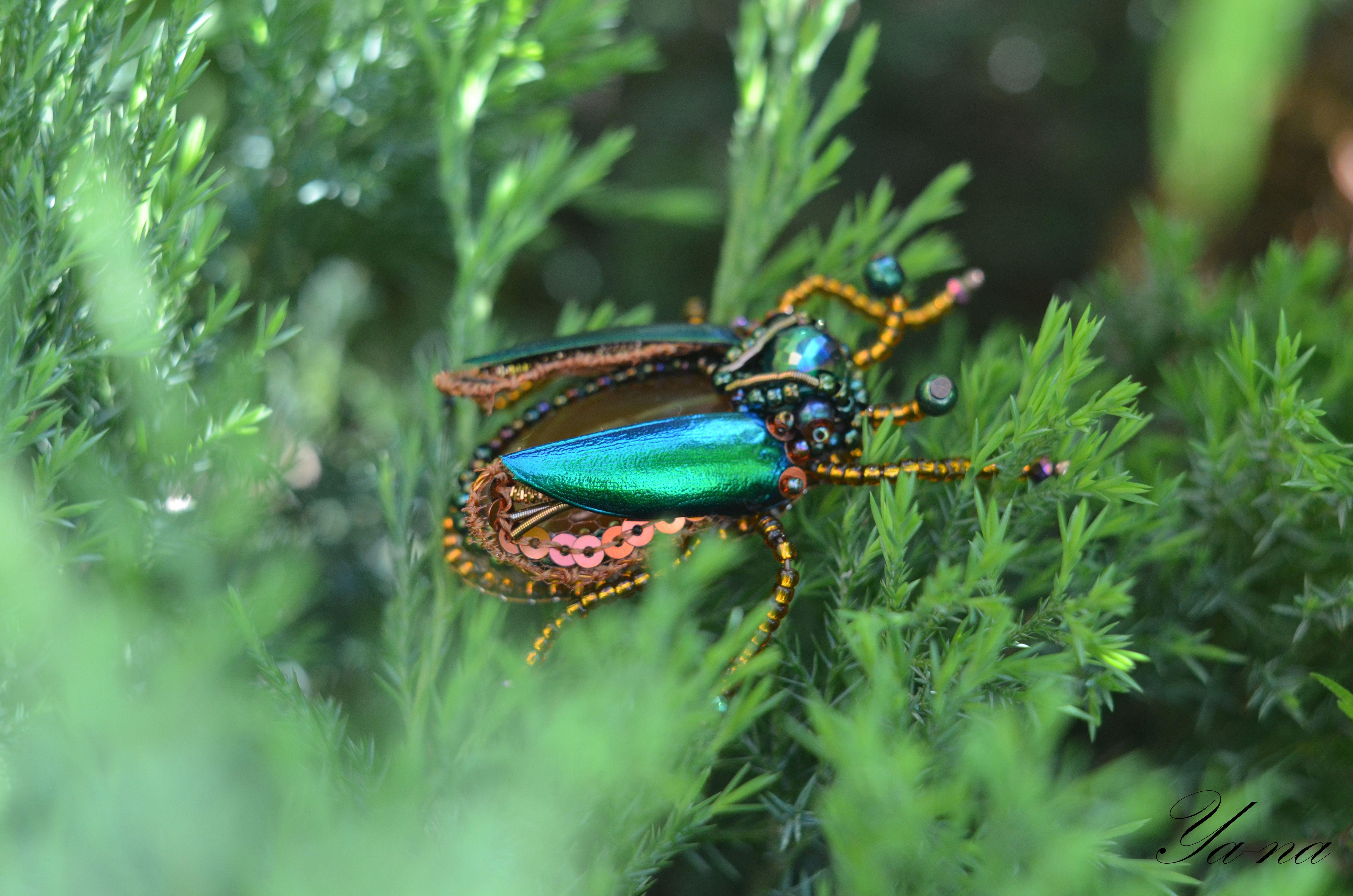 жукзлатка жукзеленый купитьжука бисерныйжук жукизбисера жуккоричневый брошьжук купитьброшь насекомое брошьизбисера длялюбимой брошьвподарок