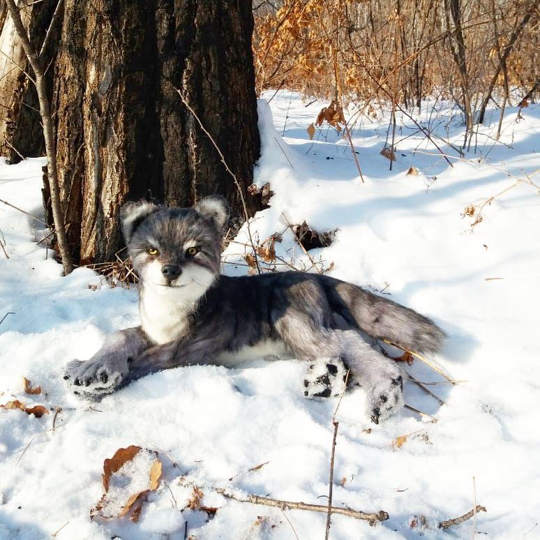 волк реалистичные волченок игрушки