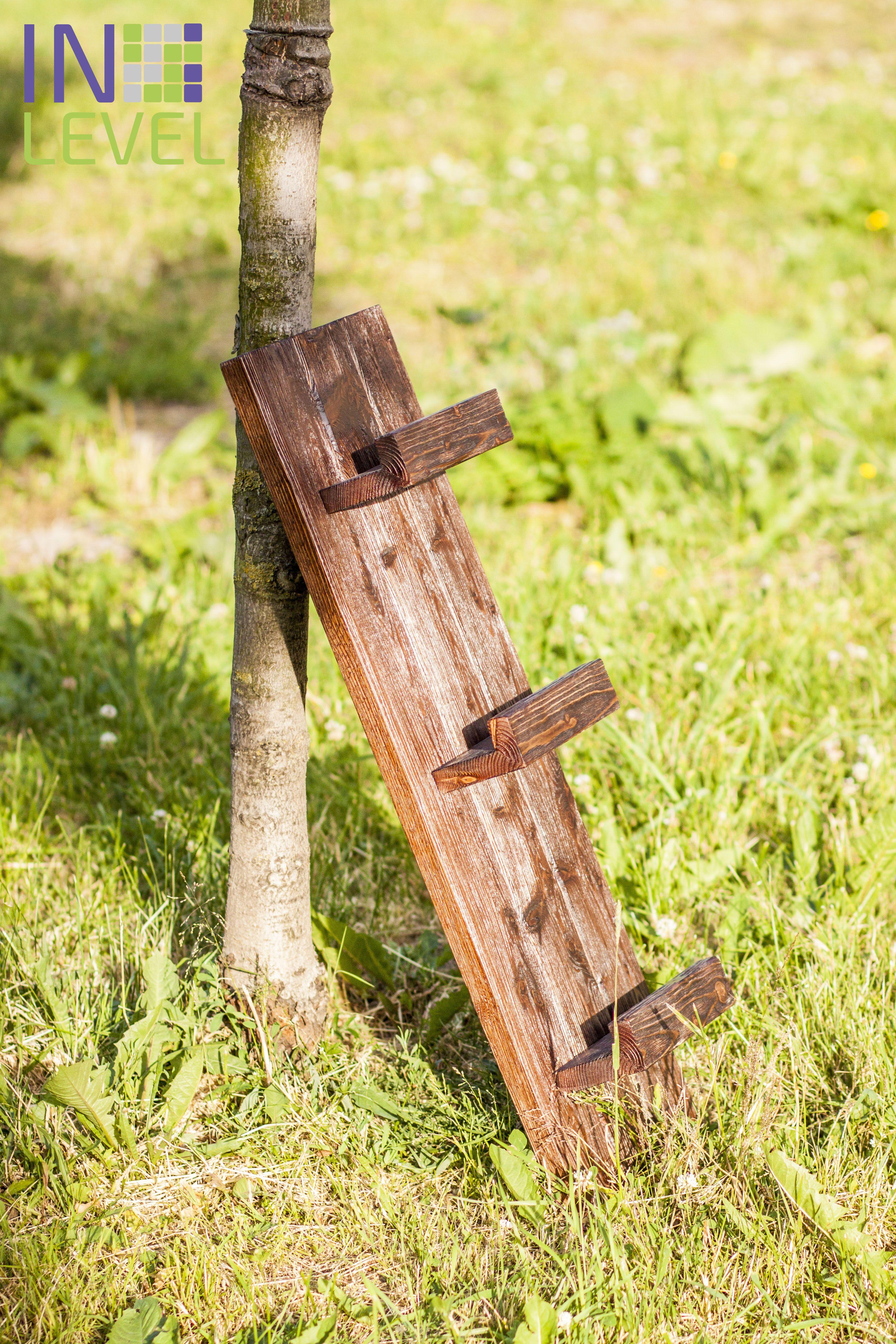 интерьер полка дерево вино бар сосна