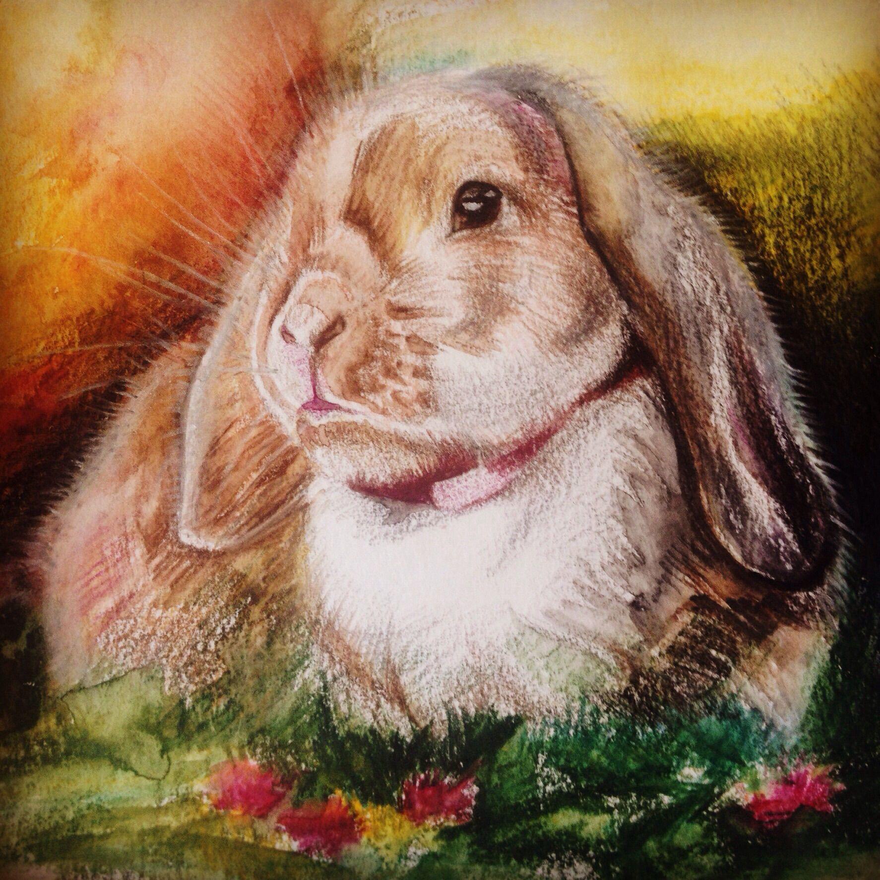 животные акварель картины портрет собаки рисунок кошки