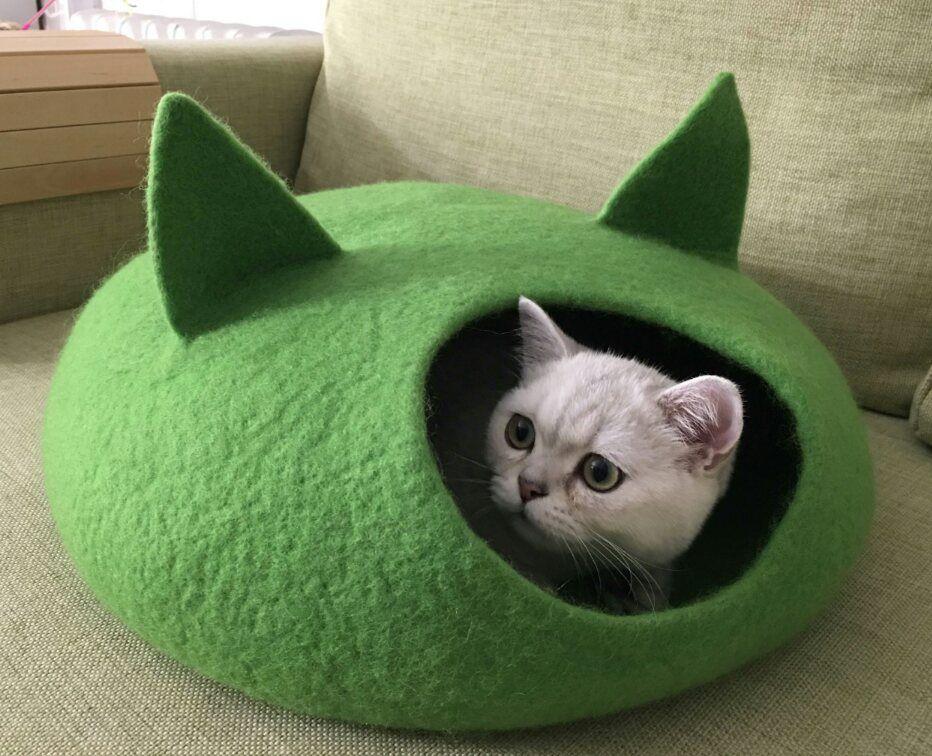 кошкин валяние дом