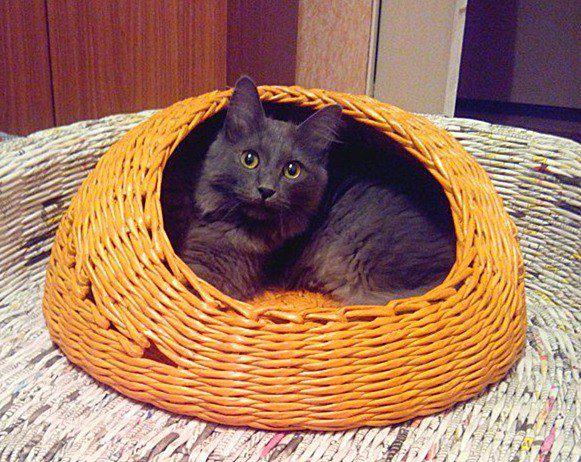 кошек ручная плетение газет заказ для хендмейд из лежанка уют работа домик домашние дом кошка животные котэ питомец любимец любителям кошки