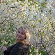 Цветы и не только, из фоамирана