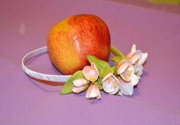 Ободок Цвет вишни