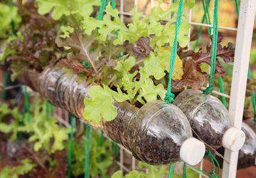 20 идей что можно сделать из пластиковых бутылок