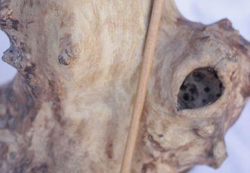 Заколка шпилька деревянная