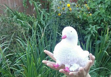 Вязаный голубь