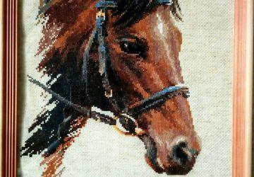 Конь Булат