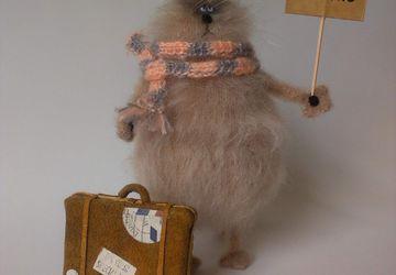 Кот путешественник