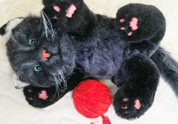 Реалистичный кот Жорик