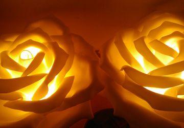Цветы светильники розы