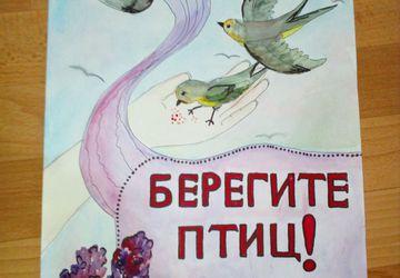 """Плакат """" БЕРЕГИТЕ ПТИЦ"""""""