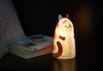 Светильник войлочный  Рыжий кот