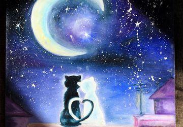 Лунные коты