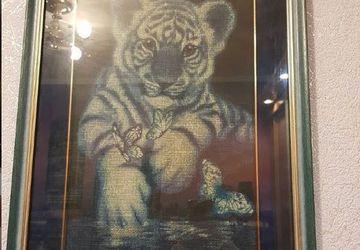 Голубой тигренок