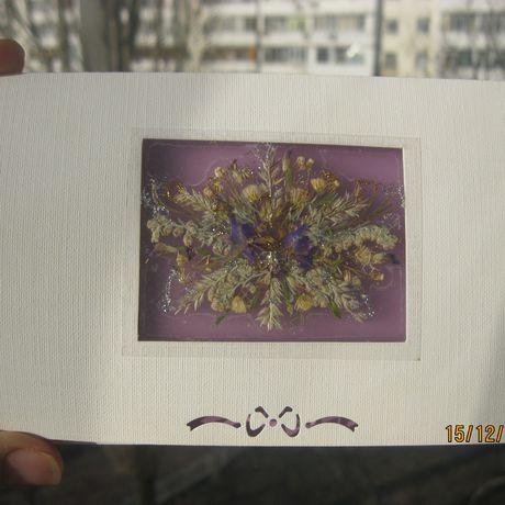 гербария цветов) (сухих открытки поздравительные из флористика