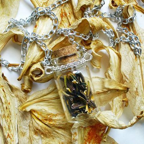 лавкалисицы handmade волшебнаябаночка ручнаяработа кулон сухоцветы