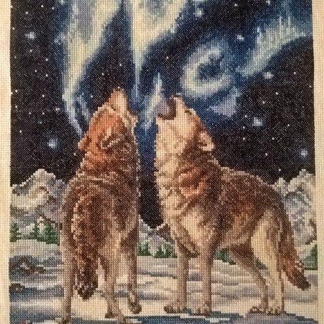 нити волки искусство вышивка